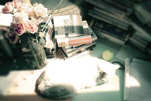时间(外一首)(诗歌) - 深秋 - 深秋的故事的博客