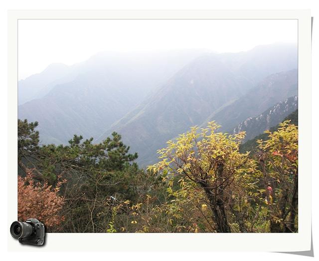 寻秋——深秋庐山行(摄影组图) - 深秋 - 深秋的故事的博客
